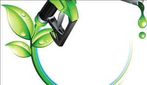 Combustible de biobutanol Mercado