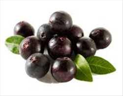 Mercado global de Acai Berry