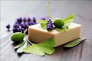 Mercado mundial de jabones orgánicos