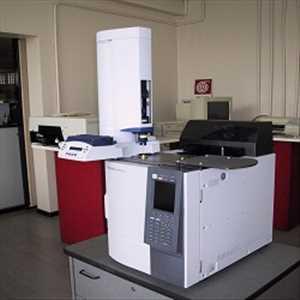 Cromatografía de gases Mercado
