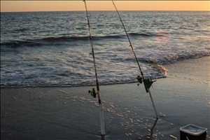 Cañas de pescar de surf