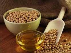 Global Hexane Free Proteins Market