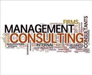 Servicios de consultoría de gestión