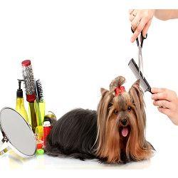 Mercado global de cuidado de mascotas móvil